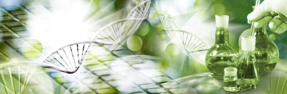 biolab medium